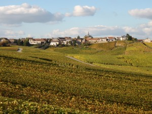 Sleepy villages, pampered vineyards in Champagne