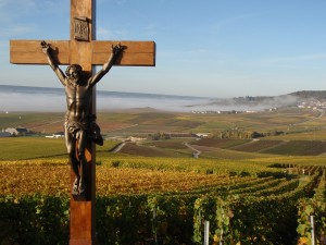 Looking down from Champillon to Epernay